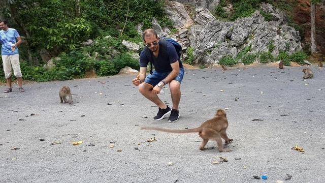 افضل 6 أنشطة في حديقة القرود بينانج ماليزيا