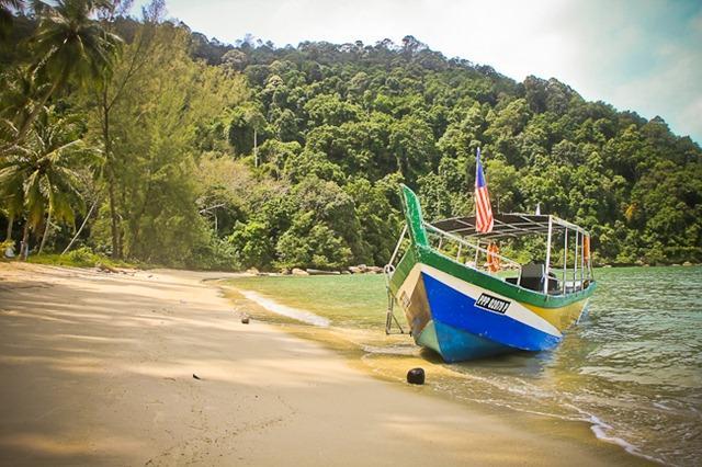 افضل 6 أنشطة في حديقة القرود بينانج ماليزيا | حديقة القرود فى بينانج
