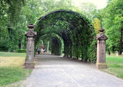 جولة في حديقة اورانجري