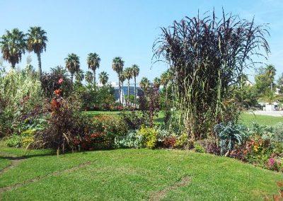 جولة في حديقة فونيكس