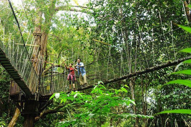 أفضل أنشطة في الحديقة الوطنية في بينانج