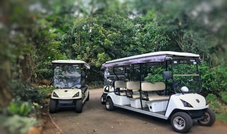 الحديقة النباتية الملكية كاندي سريلانكا