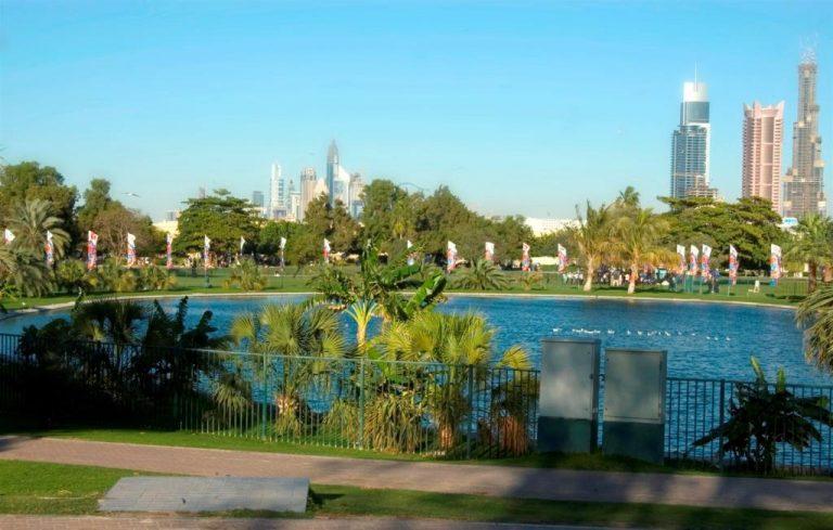 أنشطة في حديقة الصفا دبي الامارات