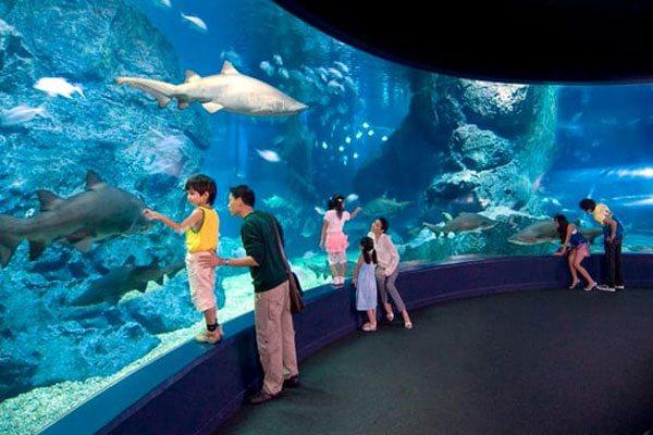 أفضل أماكن السياحة في بانكوك تايلاند
