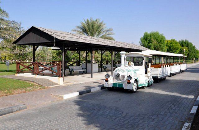 أنشطة في منتزه الشارقة الوطني الامارات