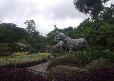 جوله فى حديقة تامان ماتاهاري