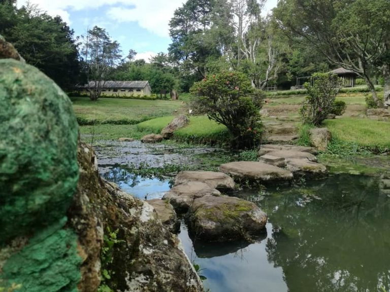 حديقة فكتوريا سيريلانكا