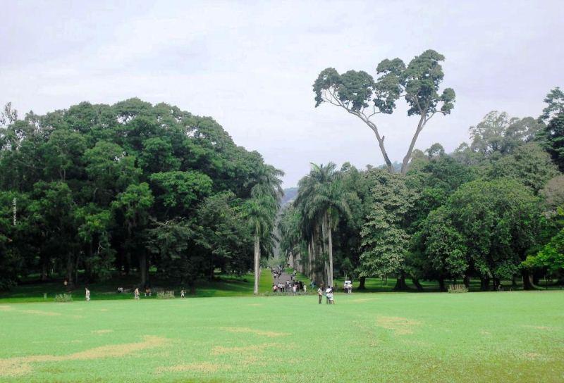 حديقة فكتوريا في نوراليا
