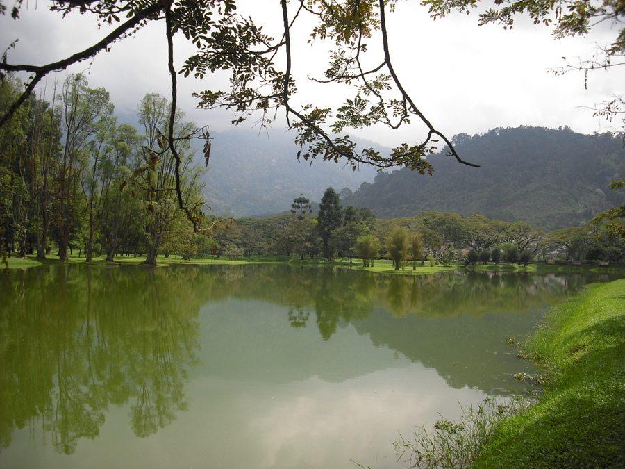 بحيرة و حدائق تايبينج