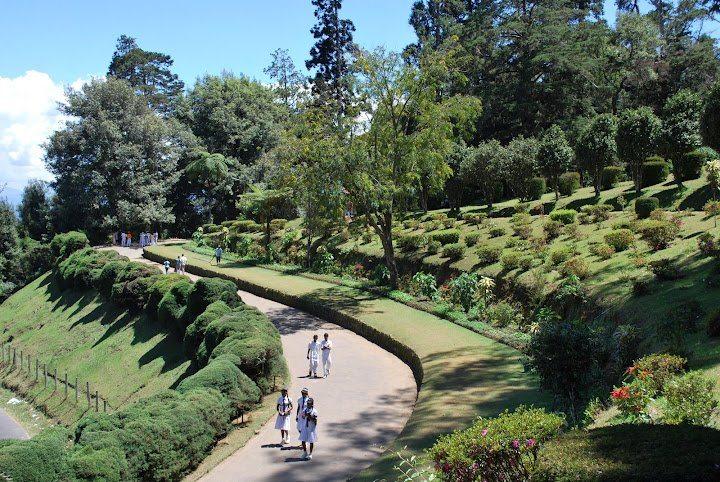 حديقة هاجالا النباتية