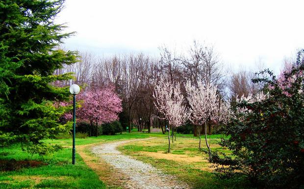أنشطة في حديقة بوتانيك بورصة تركيا