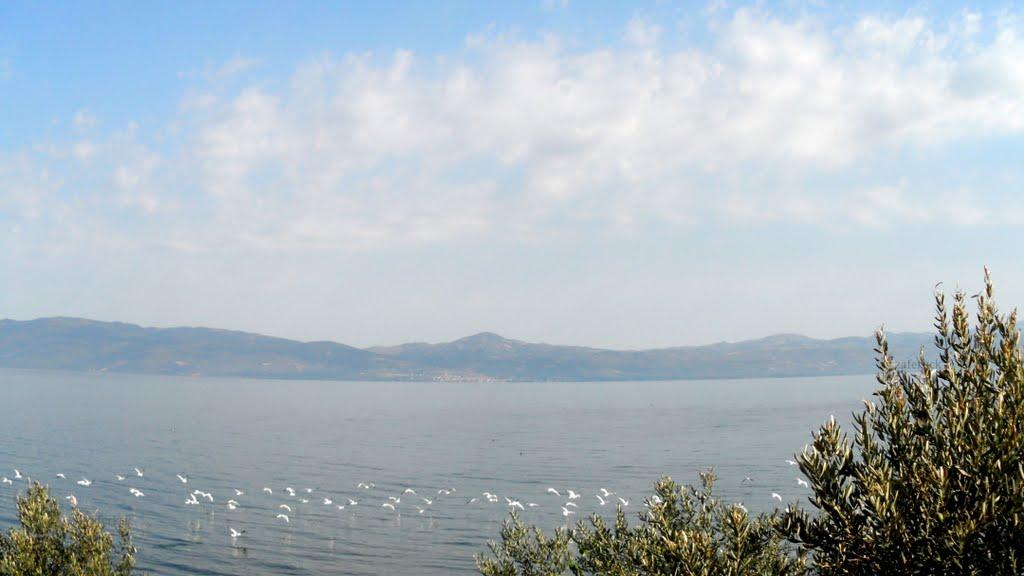 أفضل 6 بحيرات في بورصة تركيا