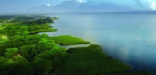افضل اماكن سياحية في مدينة سبانجا