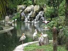 أسعار ورسوم دخول حديقة الطيور كوالالمبور