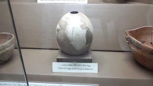 أفضل 5 أنشطة في متحف الفجيرة الامارات