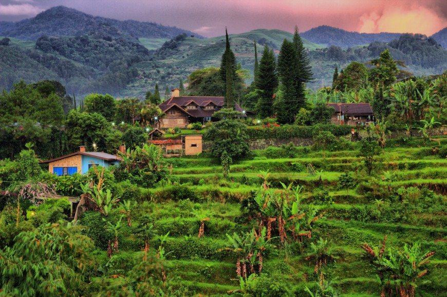 Gunung Mas Ponshak 인도네시아