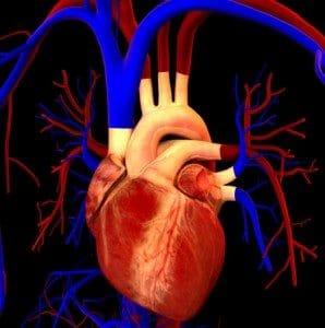 heart3-298x300-298x300