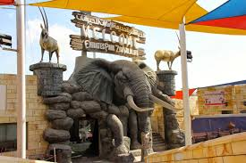 اهم الانشطة في حديقة حيوانات دبي الامارات