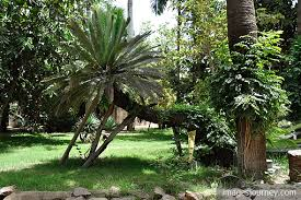 تاريخ قصر محمد على بالقاهرة