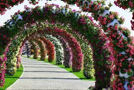 حديقة الزهور بدبي