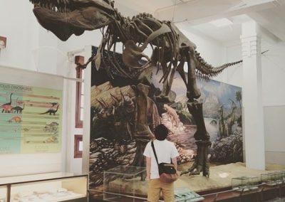 متحف الجيولوجيا في باندونج