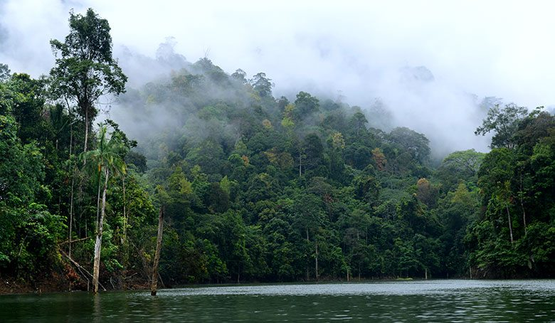 بحيرة كينير أكبر بحيرة صناعية في جنوب آسيا