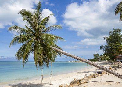 جزيرة كوه بانجان