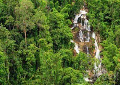 الحديقة الوطنية بيتشابورى