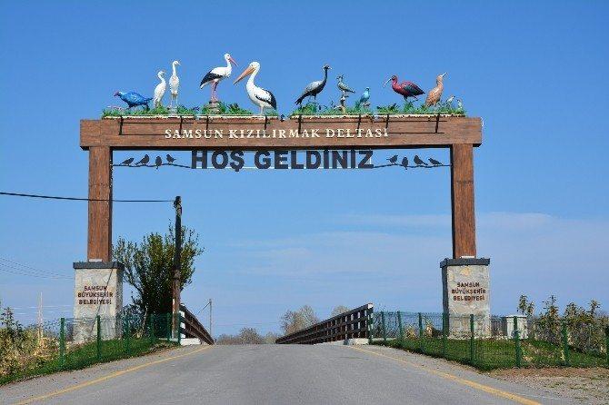 أنشطة في جنة الطيور سامسون تركيا