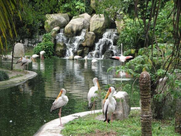 أسعار - تذاكر الدخول - للاماكن السياحيه - ماليزيا