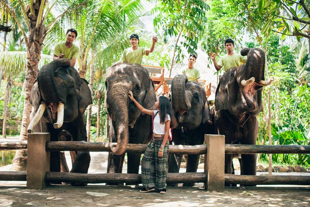 Elephants Park in Lombok