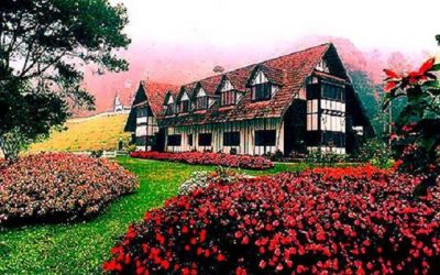 Tour a Cameron Highlands