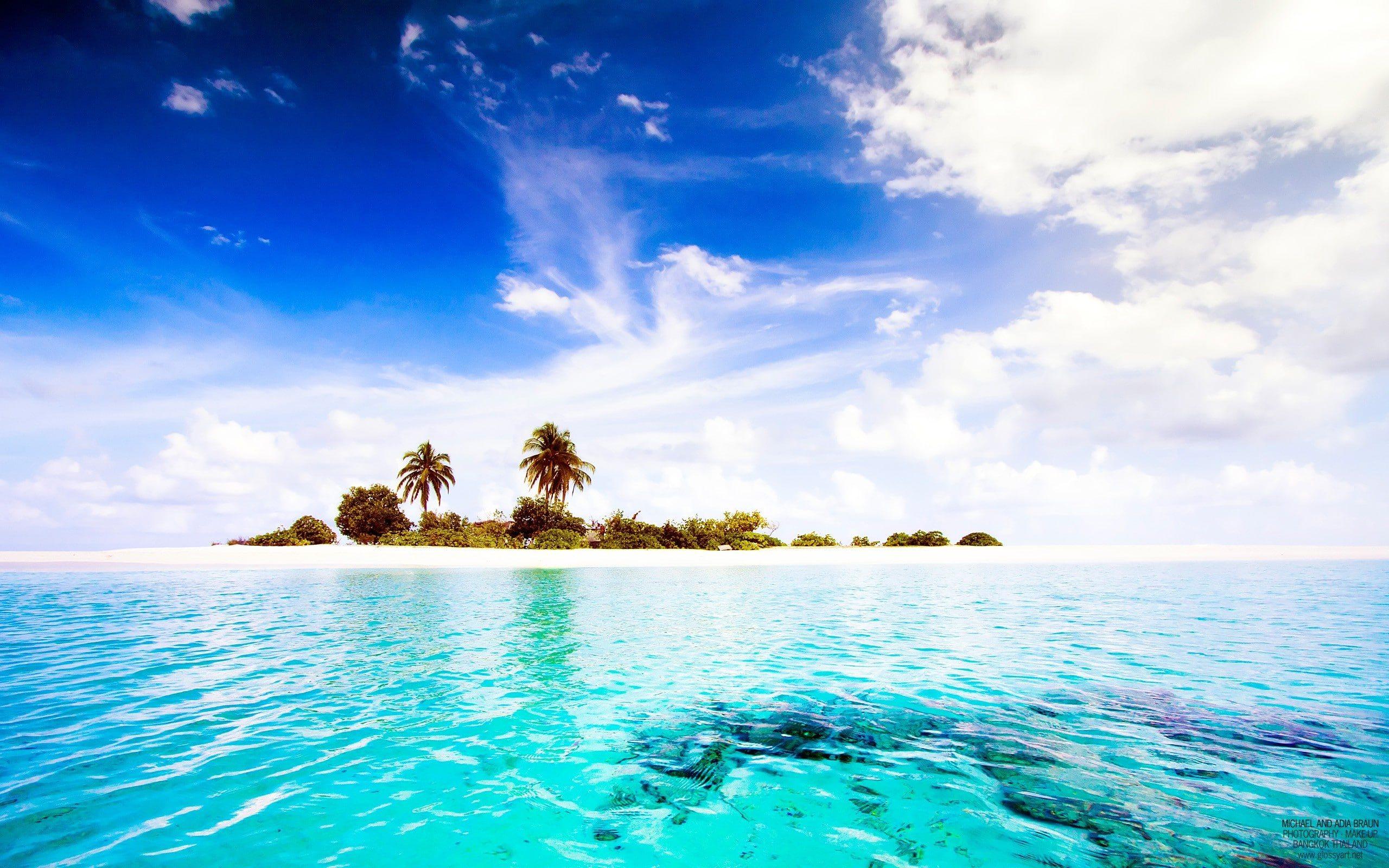 معلومات لا تعرفها عن المالديف