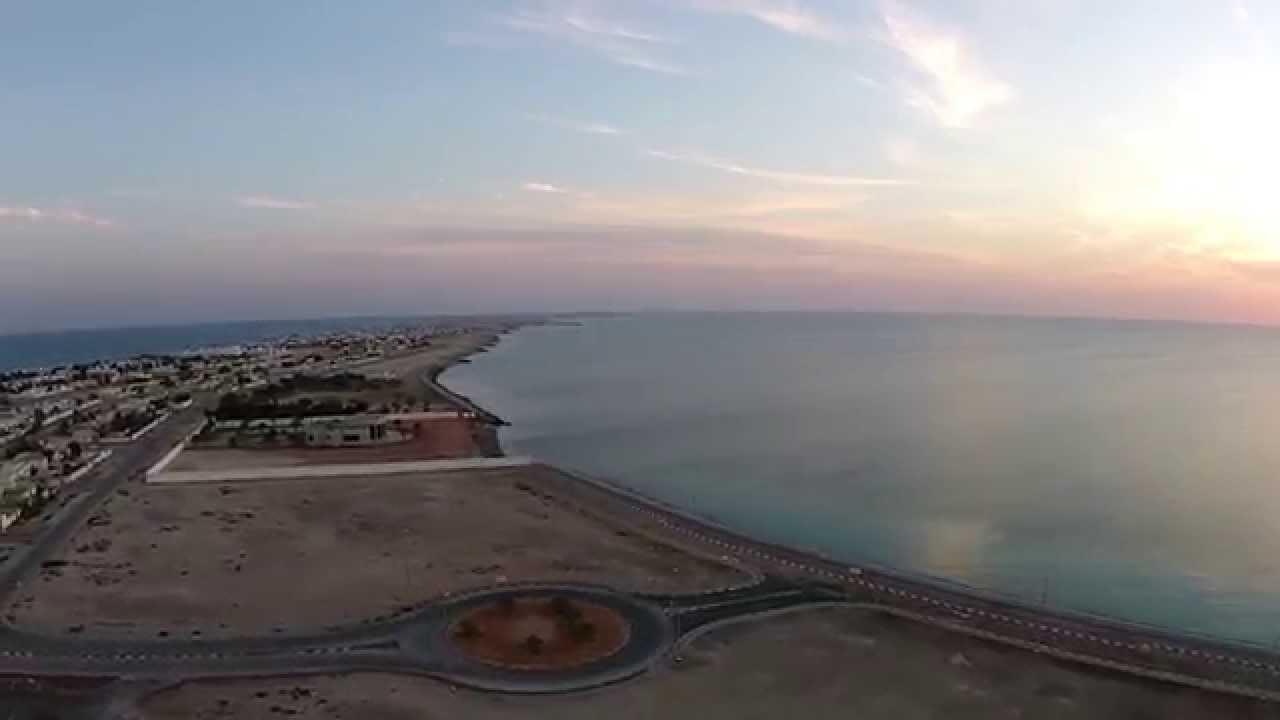 جزيرة دلما ابوظبى