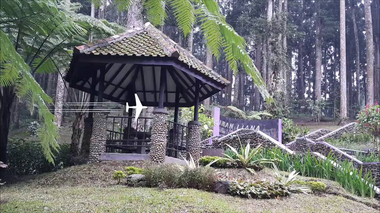 دليل السفر إلى  مدينه جاوة باندونيسيا