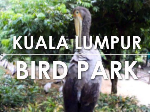 فلم حديقة الطيور في كوالالمبور Bird Park