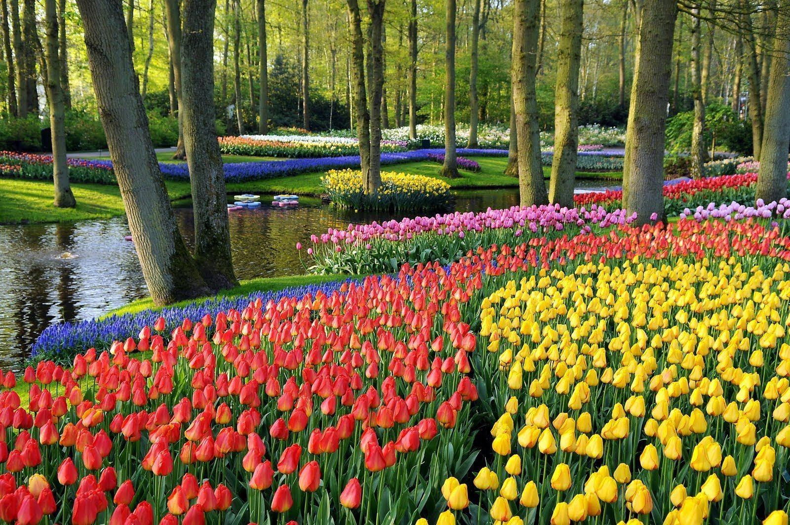 حديقة الزهور في كوالالمبور