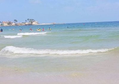 알렉산드리아의 해변들