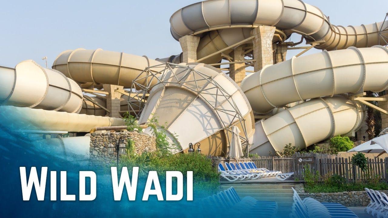 أنشطة في مدينة وايلد وادي دبي الامارات