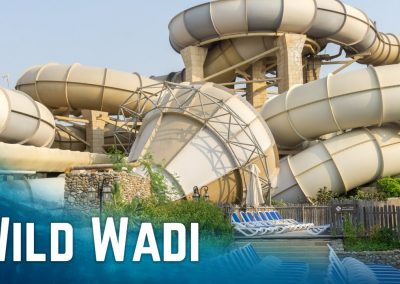 وايلد وادى دبي