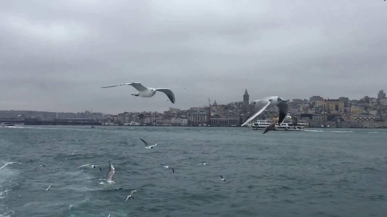 أفضل أنشطة في شاطئ جدا بوستان اسطنبول