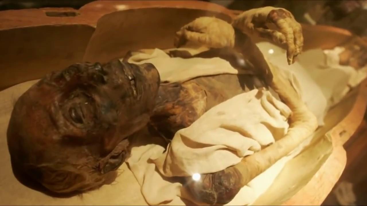 جثة فرعون في المتحف المصري
