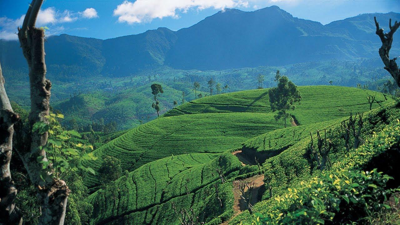 افضل مناطق الجذب السياحى فى سريلانكا | اهم المناطق السياحية فى سريلانكا