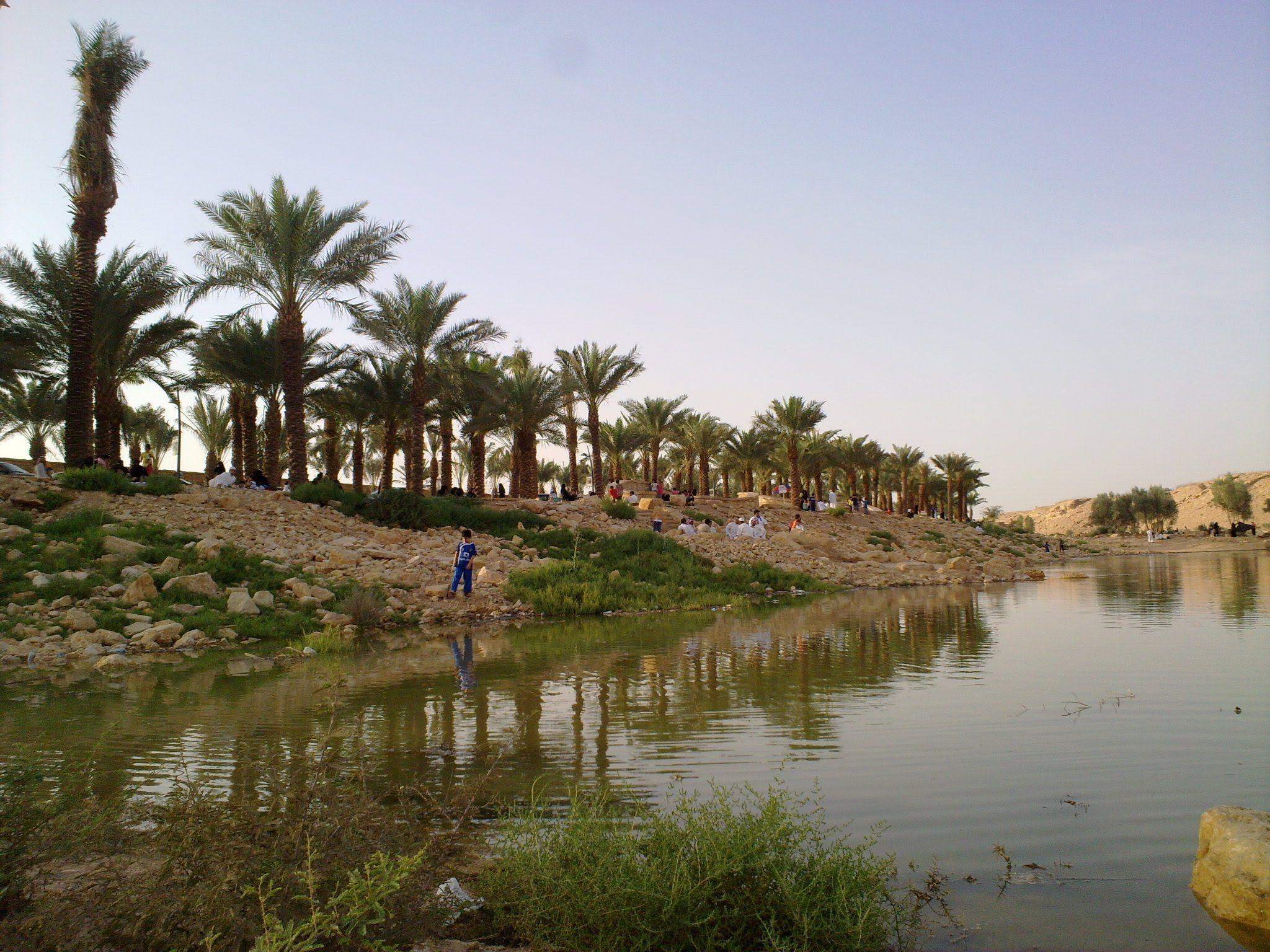 أفضل أنشطة في وادي حنيفة في الرياض