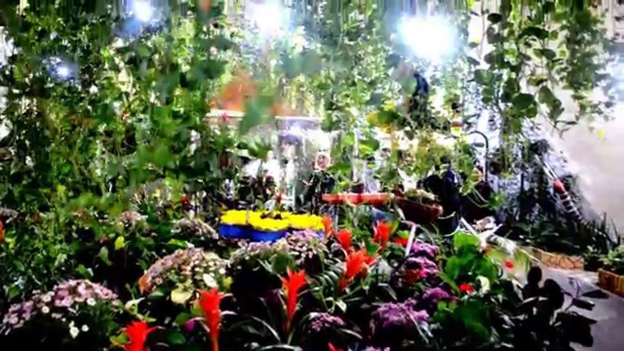 أنشطة في حديقة الفراشات دبي الامارات