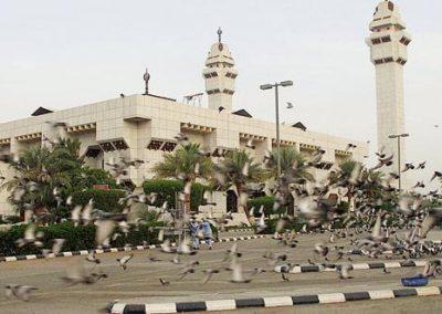 جوله فى مسجد التنعيم