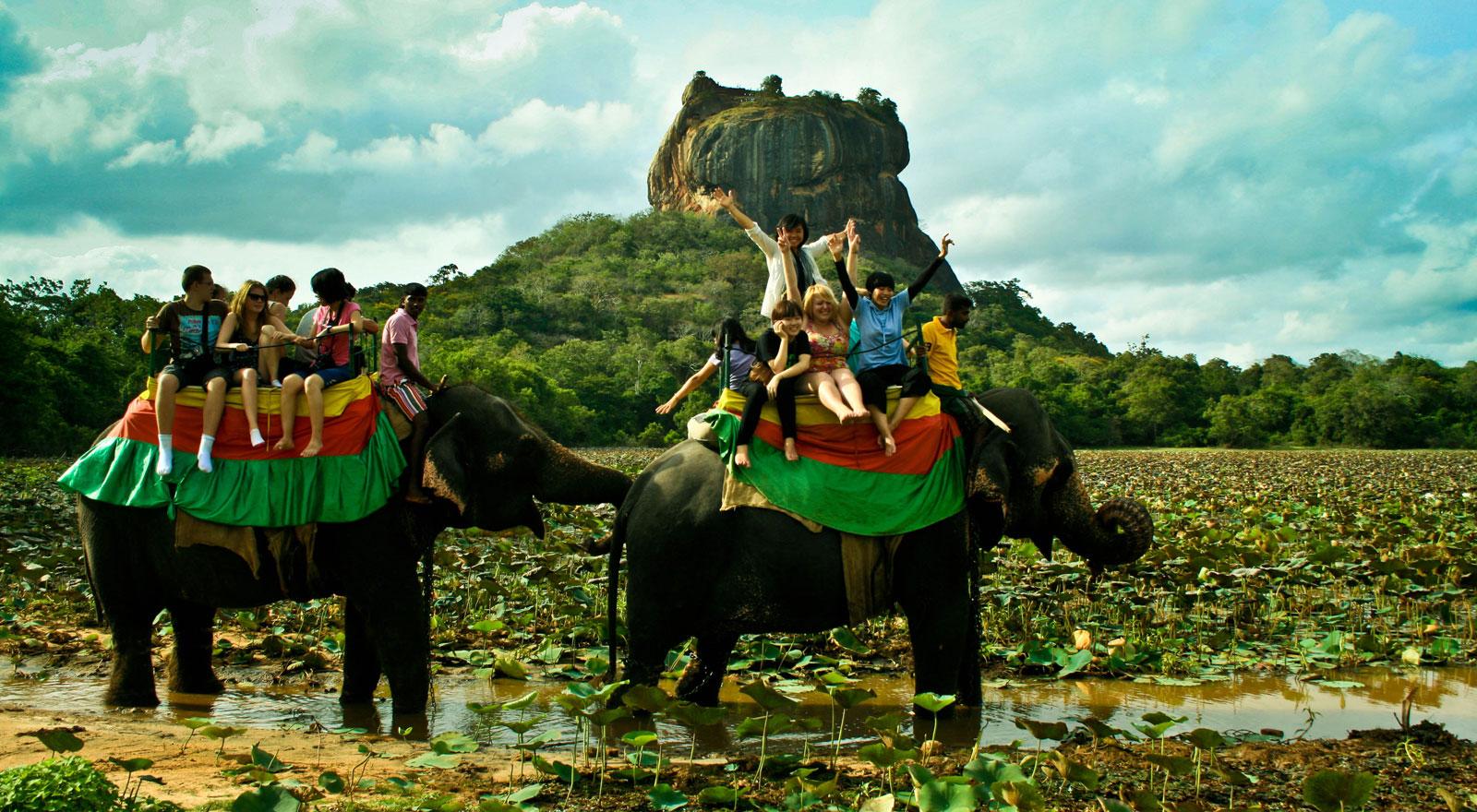 اكتشف الحياة البرية فى ولاية سريلانكا