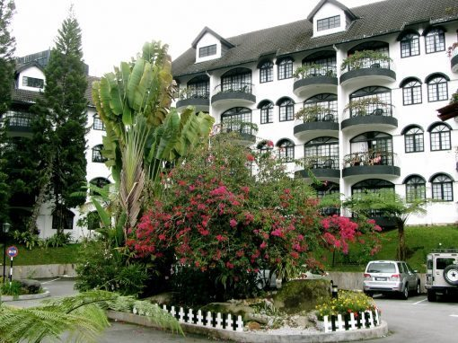 فندق ستروبري بارك strawberry park resort cameron highland