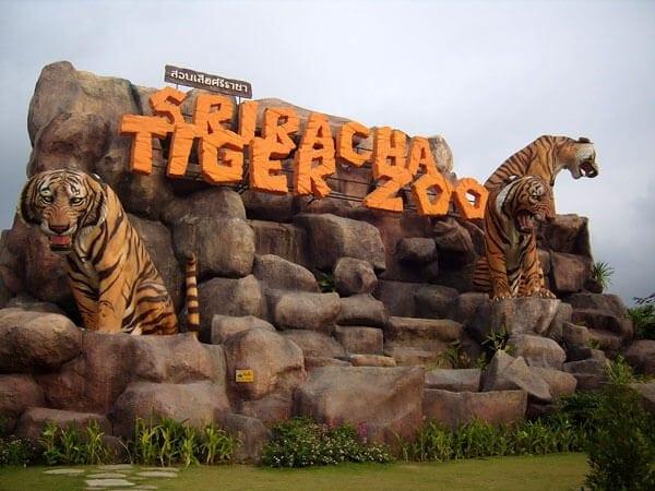 حديقة النمور فى بتايا