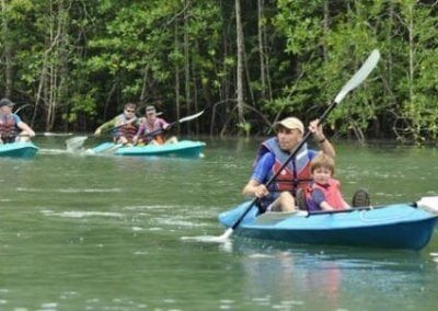 رحلة المانغروف لنكاوي Mangrove
